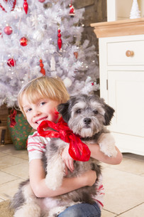 Boy with Puppy at Christmasの写真素材 [FYI00764548]