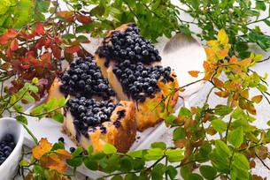 cheesecake blueberriesの写真素材 [FYI00764741]
