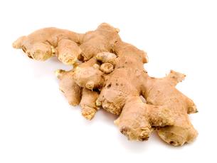 Ginger root,Ginger root,Ginger root,Ginger rootの写真素材 [FYI00764857]