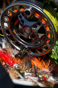 fly fishing bugs and road with realの写真素材 [FYI00765229]