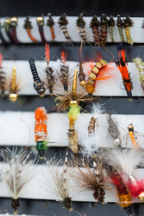 different fly fishing bugs in boxの写真素材 [FYI00765230]