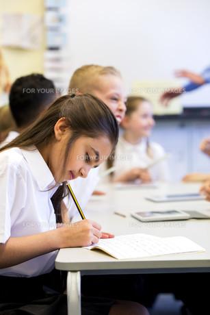 Working At Schoolの写真素材 [FYI00765505]