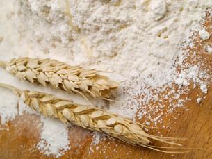 Wheat And Flour,Wheat And Flour,Wheat And Flour,Wheat And Flourの素材 [FYI00765781]