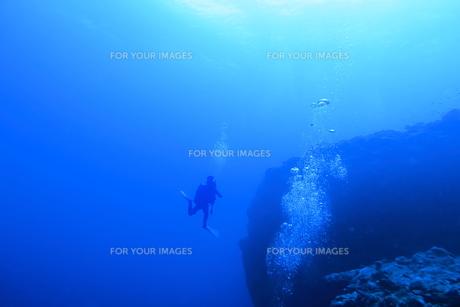 宮古島の海中を泳ぐダイバーの写真素材 [FYI00766117]