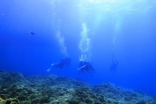 宮古島の海中を泳ぐダイバーの写真素材 [FYI00766118]