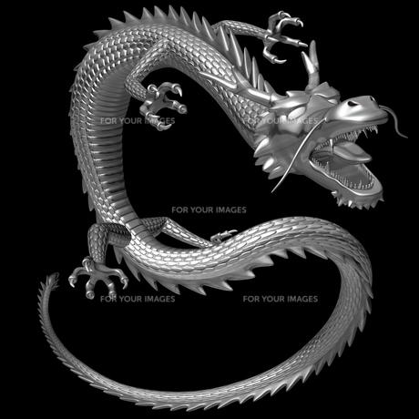 銀の龍 3Dイラストのイラスト素材 [FYI00766252]