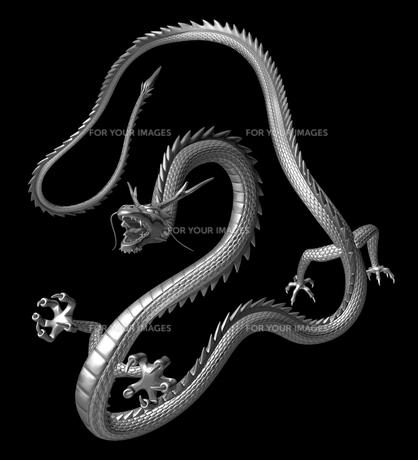 銀の龍 3Dイラストのイラスト素材 [FYI00766257]