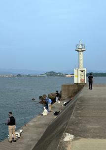 和歌山県由良の波止場散歩の写真素材 [FYI00766730]