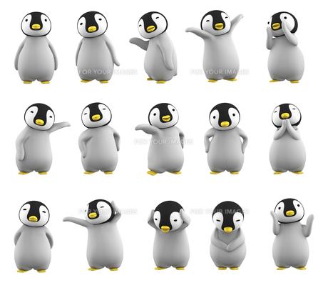 ペンギンのこどものイラスト素材 [FYI00767113]