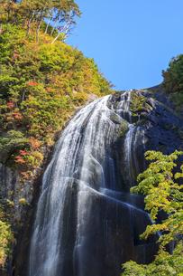 安の滝の写真素材 [FYI00767147]