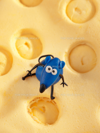 Mouse on cheese fondant cake,Mouse on cheese fondant cake,Mouse on cheese fondant cake,Mouse on cheese fondant cake,Mouse on cheese fondant cake,Mouse on cheese fondant cake,Mouse on cheese fondant cake,Mouse on cheese fondant cakeの素材 [FYI00767443]