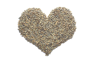 Marbled dark green lentils in a heart shapeの写真素材 [FYI00767552]