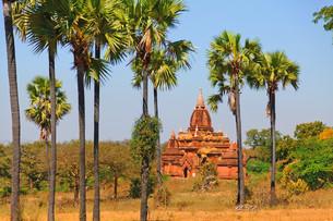 Ancient pagodas in Bagan, Myanmar,Ancient pagodas in Bagan, Myanmar,Ancient pagodas in Bagan, Myanmar,Ancient pagodas in Bagan, Myanmarの写真素材 [FYI00767740]