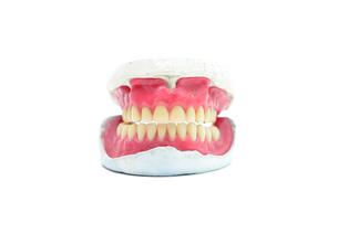 teeth moldの素材 [FYI00768415]