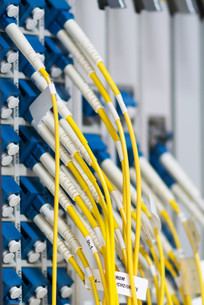 fiber optic with servers in a technology data centerの素材 [FYI00768912]