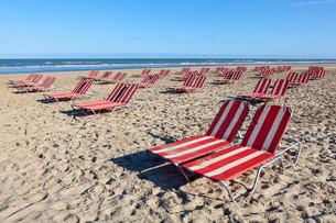 Beach lounger in Hollandの素材 [FYI00769324]