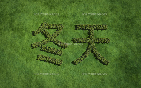 winter chinese text tree with grass backgroundの写真素材 [FYI00769649]