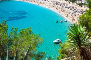 ibiza punta de xarraca turquoise beach paradise in balearic islandsの写真素材 [FYI00769949]