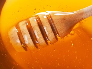 Honey,Honeyの素材 [FYI00770447]