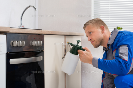 Worker With Pesticide Sprayerの写真素材 [FYI00770578]