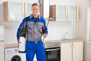 Pest Control Worker With Insecticide Sprayerの写真素材 [FYI00770606]