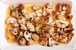 Turkey with mushrooms,Turkey with mushrooms,Turkey with mushrooms,Turkey with mushroomsの写真素材 [FYI00771075]