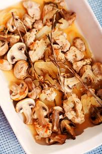 Turkey with mushrooms,Turkey with mushrooms,Turkey with mushrooms,Turkey with mushroomsの写真素材 [FYI00771091]
