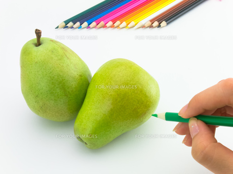 Drawing Pearの写真素材 [FYI00771225]