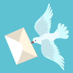 White carrier pigeon brings a letterの写真素材 [FYI00771369]