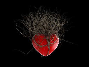 Brown's roots grew out of a red heart, in a black background.の写真素材 [FYI00771384]