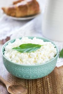 Homemade Ricotta cheeseの素材 [FYI00772169]