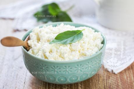 Homemade Ricotta cheeseの素材 [FYI00772178]
