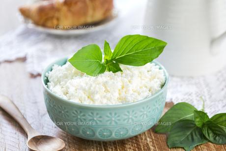 Homemade Ricotta cheeseの素材 [FYI00772187]
