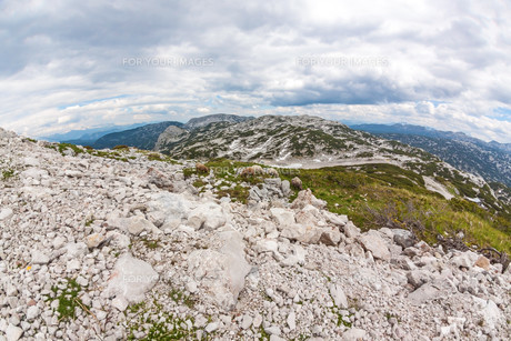 Dachstein Mountains panorama with sheepの写真素材 [FYI00772427]