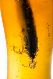 fishing bait wobbler in glass with beerの写真素材 [FYI00772428]