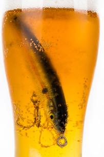 fishing bait wobbler in glass with beerの写真素材 [FYI00772482]