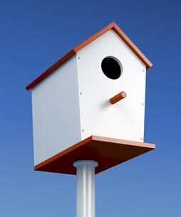 Nest boxの素材 [FYI00772759]