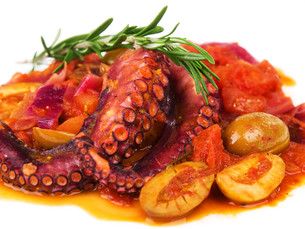 Octopus with tomato sauce and olivesの写真素材 [FYI00772938]