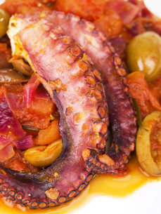 Octopus with tomato sauce and olives,Octopus with tomato sauce and olivesの写真素材 [FYI00772948]