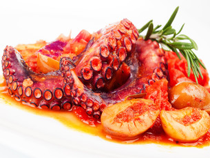 Octopus with tomato sauce and olivesの写真素材 [FYI00773008]