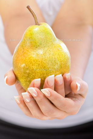 Young woman holding pear,Young woman holding pear,Young woman holding pear,Young woman holding pear,Young woman holding pear,Young woman holding pear,Young woman holding pear,Young woman holding pearの写真素材 [FYI00773278]