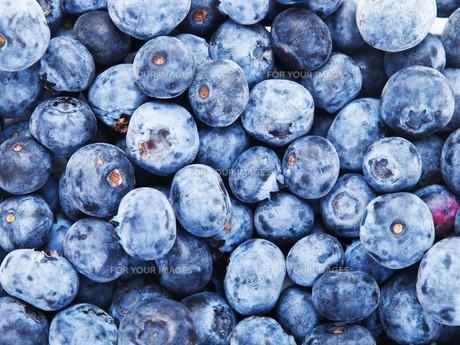 Blueberries,Blueberriesの写真素材 [FYI00773427]