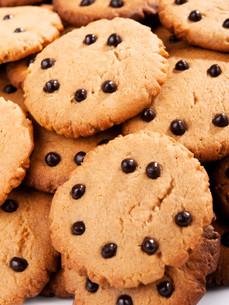 Homemade cocoa cookies,Homemade cocoa cookies,Homemade cocoa cookies,Homemade cocoa cookiesの写真素材 [FYI00774220]