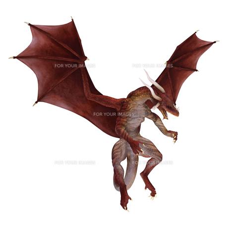 Red Dragonの写真素材 [FYI00774510]