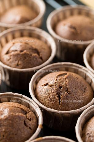 Chocolate muffins cakeの写真素材 [FYI00774585]