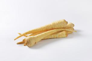 root parsleyの写真素材 [FYI00774743]