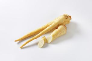 root parsleyの写真素材 [FYI00774837]