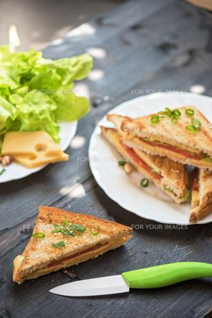 Cheese sandwichの写真素材 [FYI00775147]