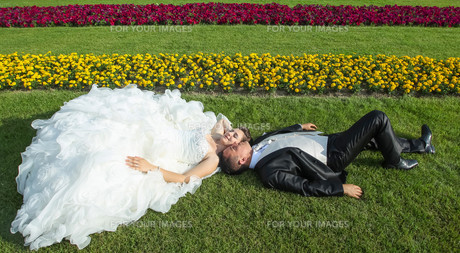 Bride and groom lying on lawnの写真素材 [FYI00775315]