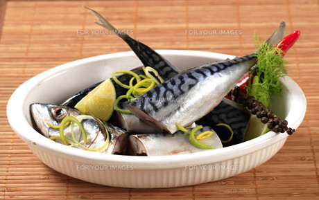 Raw mackerelの写真素材 [FYI00775373]